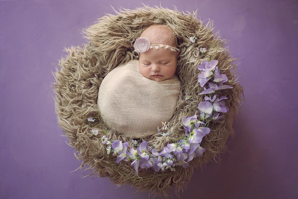 Newborn baby Jasmine-Anne photography session, canberra newborn photography, newborn photographer