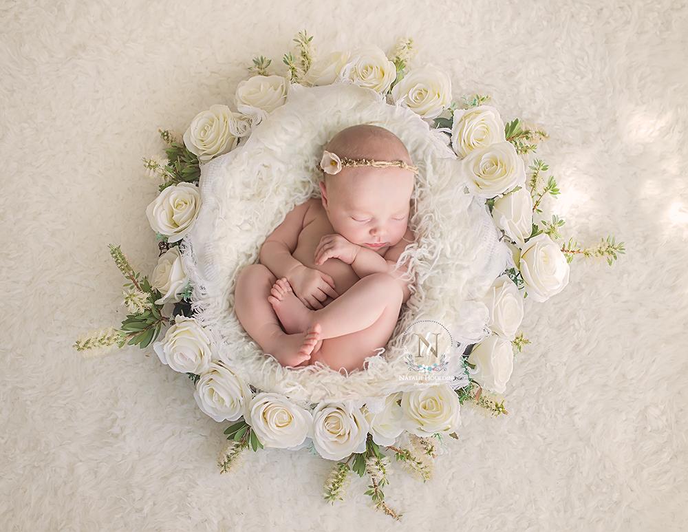 FB Jasmine_digital newborn_background