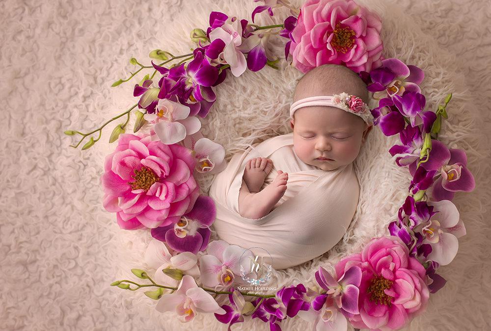 Neve – Canberra professional studio Newborn Photography