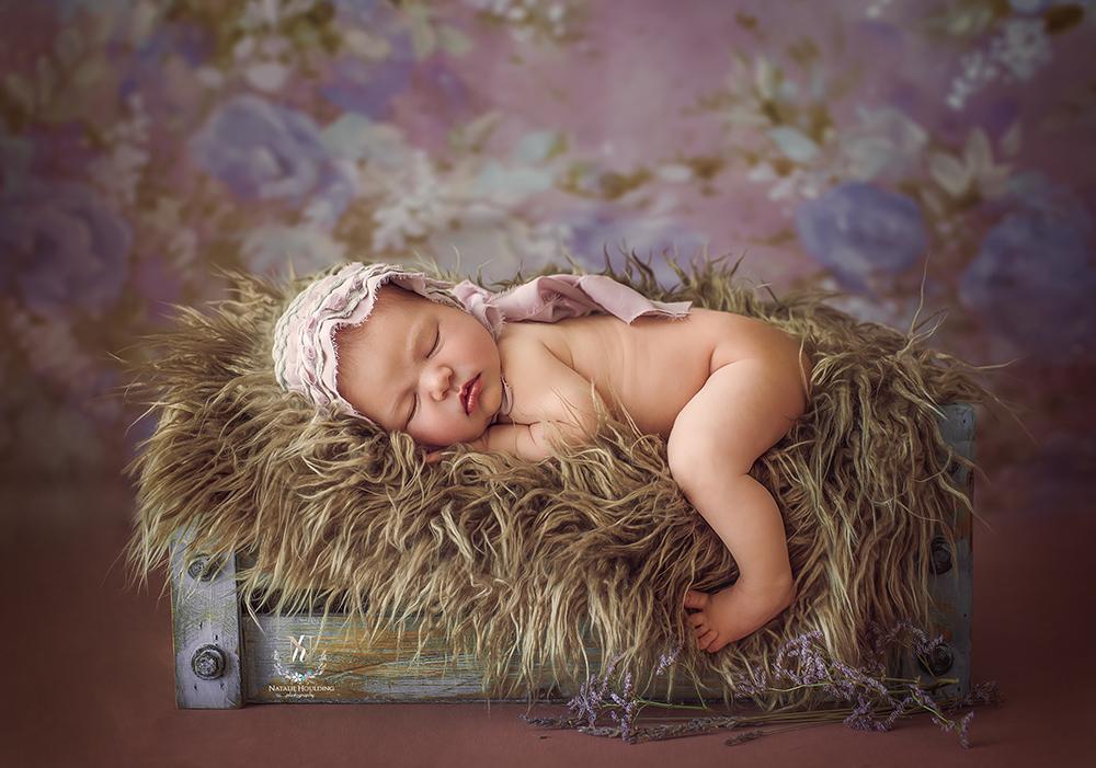 Newborn photography studio Canberra 31