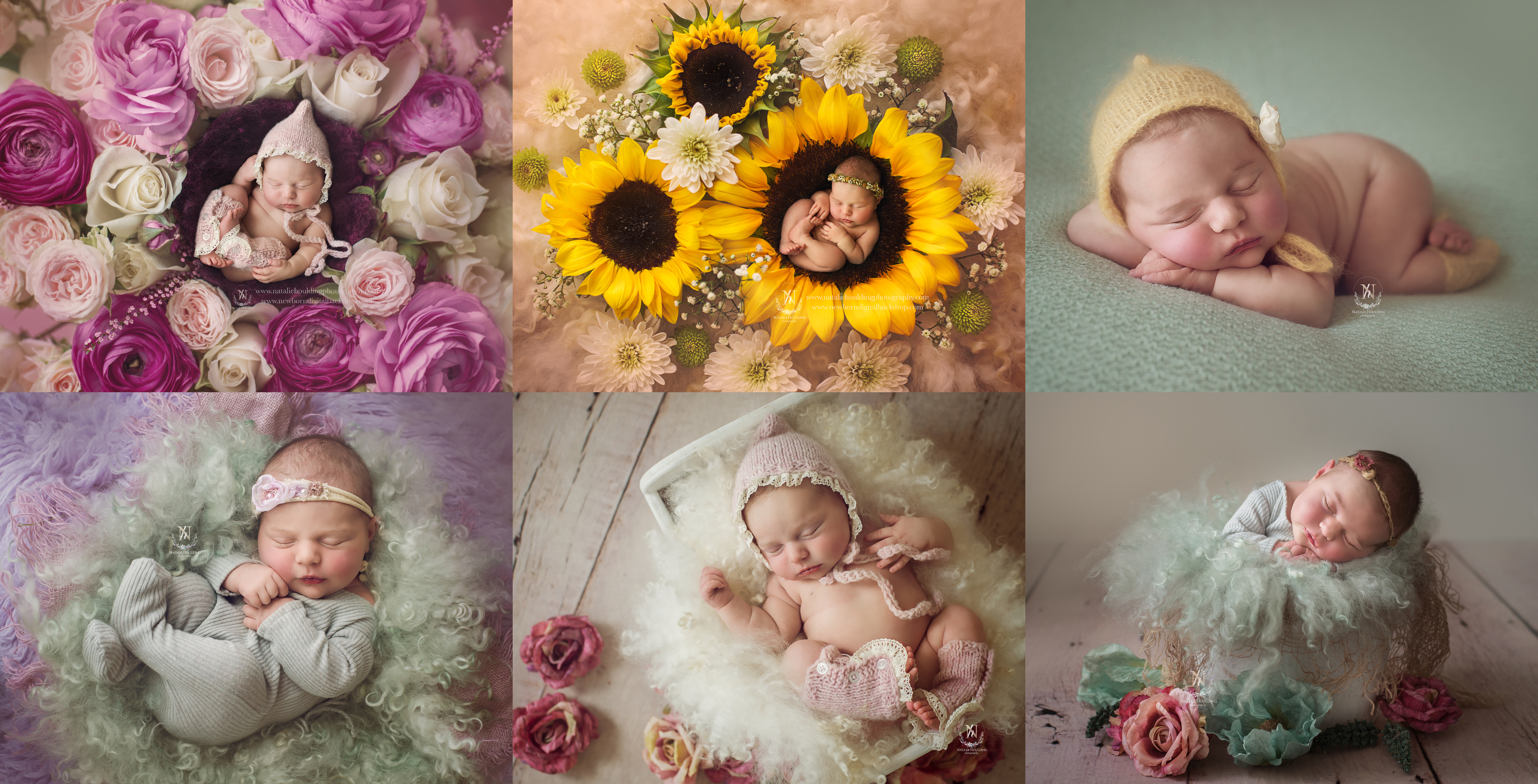 Newborn and maternity photography studio canberra natalie houlding